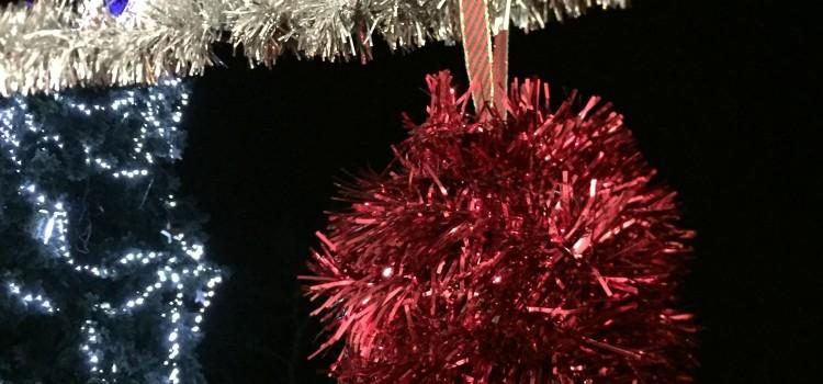Rozsvícení vánočního stromu Červenka