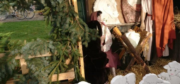 Stavba betlému – vánoční strom 2020